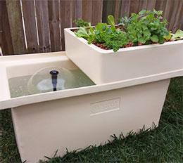 Aqua Gardening